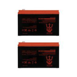Neptune Power 12V 7AH BATTERY FOR RAZOR E200 & E300S ELECTR