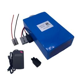 60AH 12V LiFePO4 Batteries 10A Charger BMS Rechargeable Elec