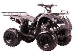 Brand New Fully Automatic 110cc Kids ATV with REVERSE - Spor