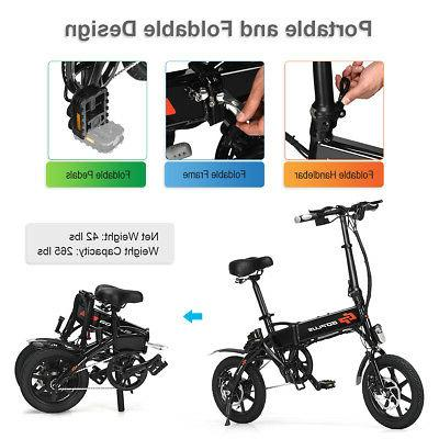 250W High Adult E-Bike