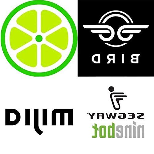 Bird Scooter Charger 3-Pack | Lime, Lime-S, Xiaomi Mijia M365, Segway ES4, Compatible ELECTRICCITY