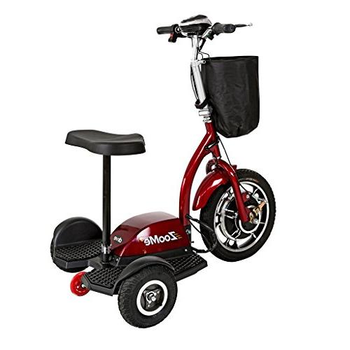 Recreational Scooter Including Year Ext.