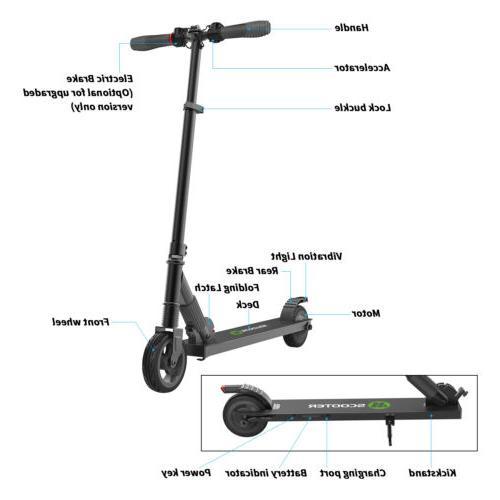 Folding City Scooter 250W