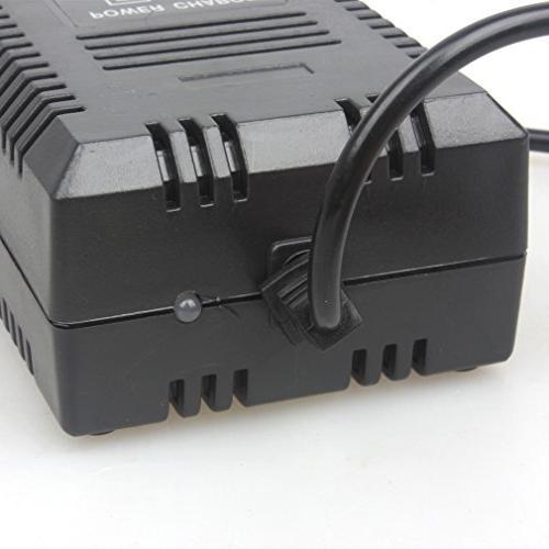 Wingsmoto Acid Battery Electric Maintenance-Free Battery