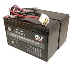 Razor Scooter Battery for e200  & e300  VICI Brand High Perf