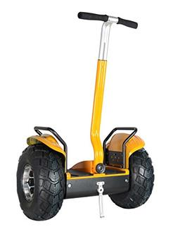 Smart Self Balance Scooter Personal Transporter 19 inch All