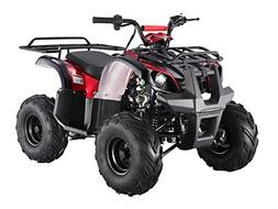 TAO TAO Brand new ATA-125D Fully Automatic UTILITY MODEL wit