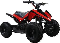 NEW UPGRADED MODEL Electric Youth ATV Sport Quad for Childre